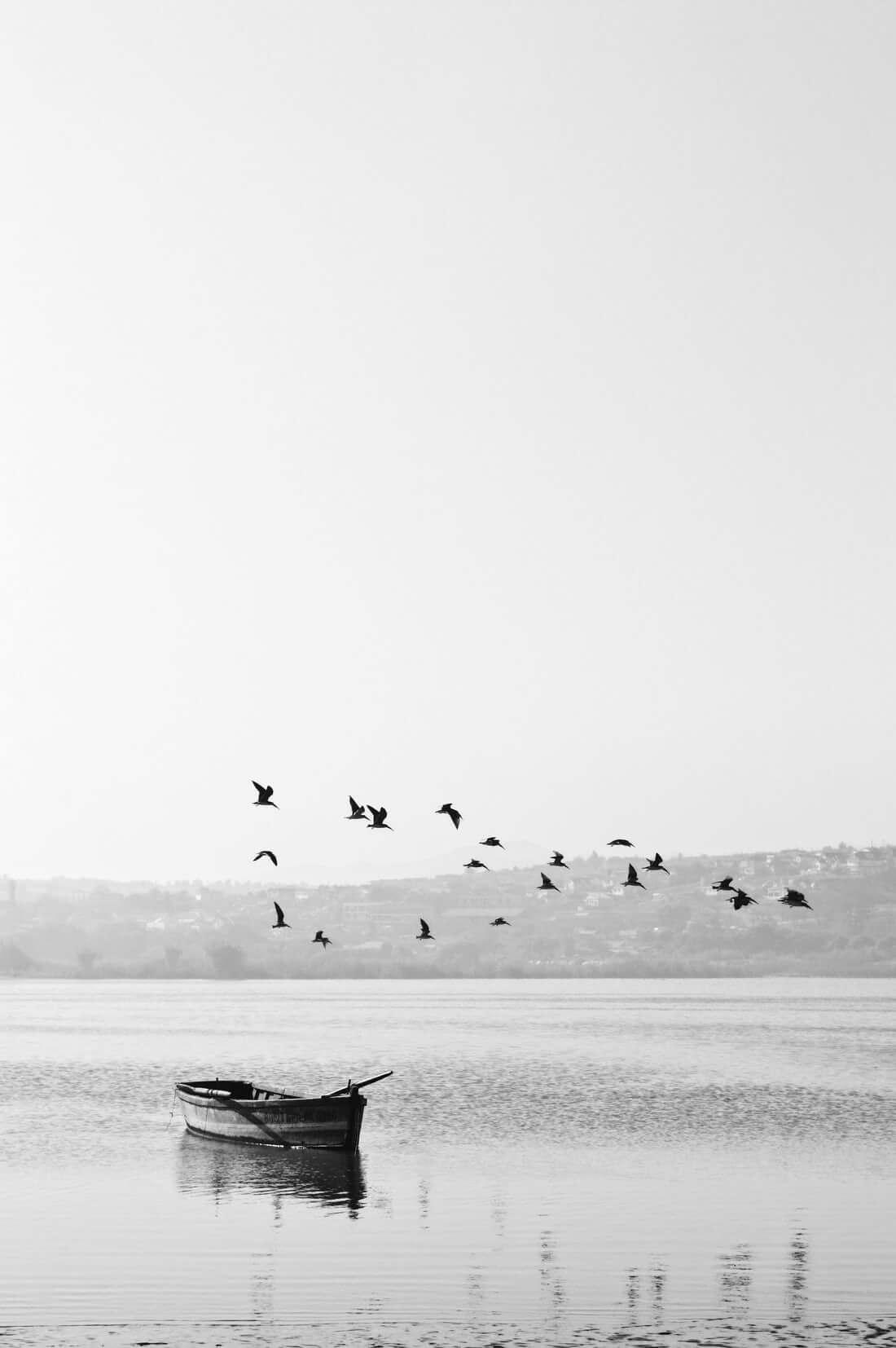 boat-in-lake
