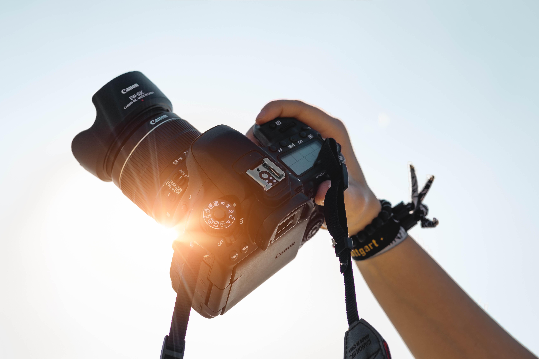 taking photos in summer
