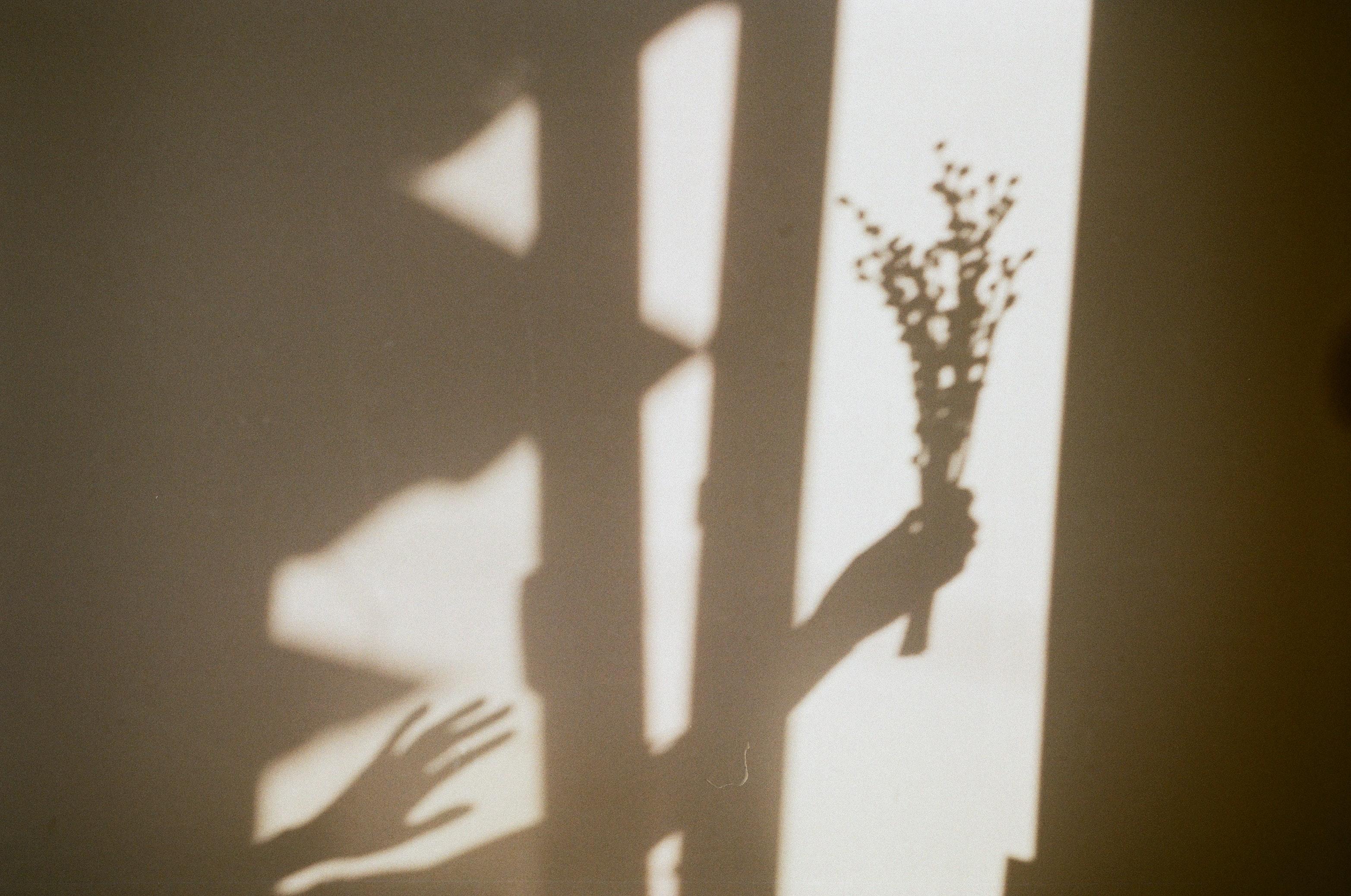 idea-para-foto-con-sombra
