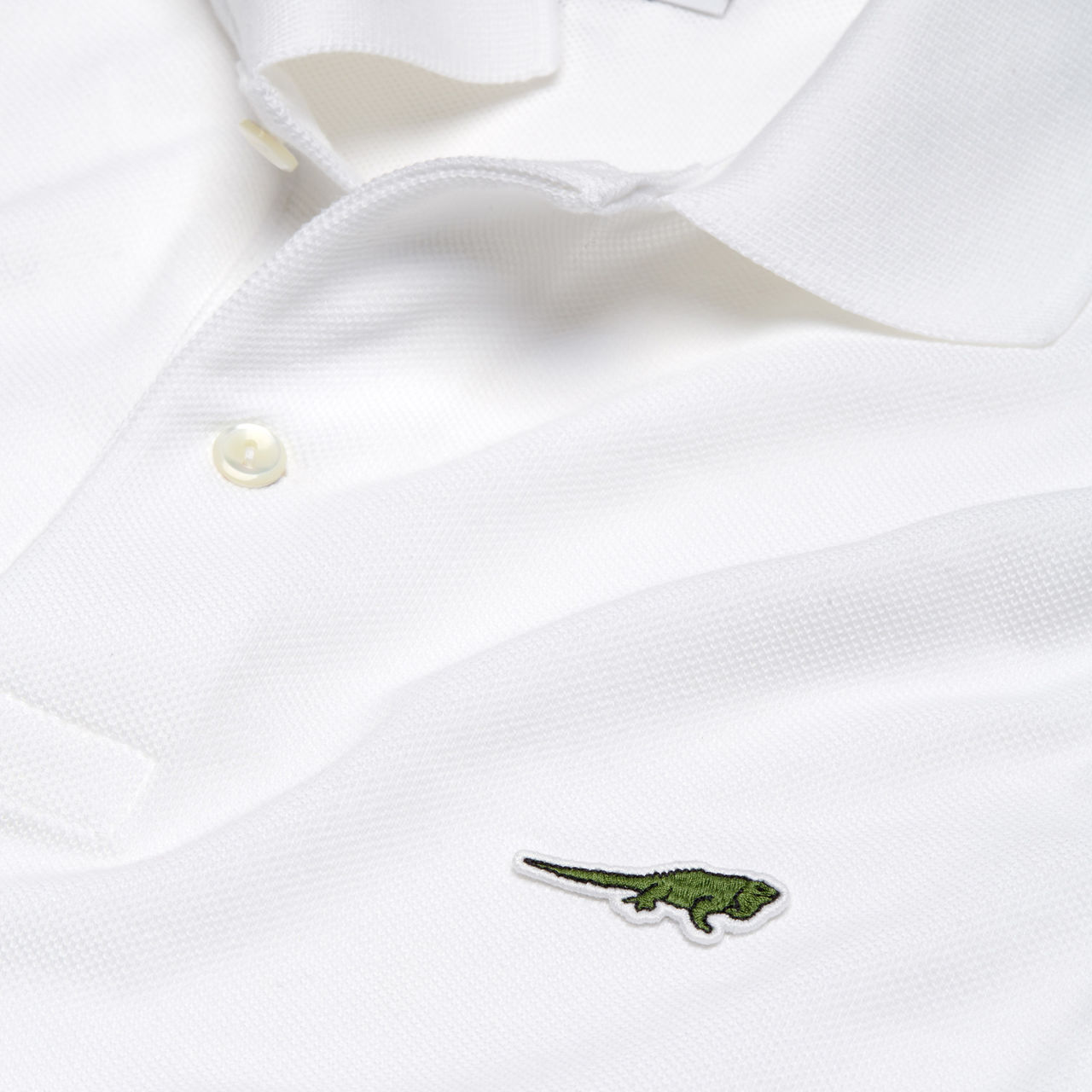 iguana anegada lacoste save our species collection