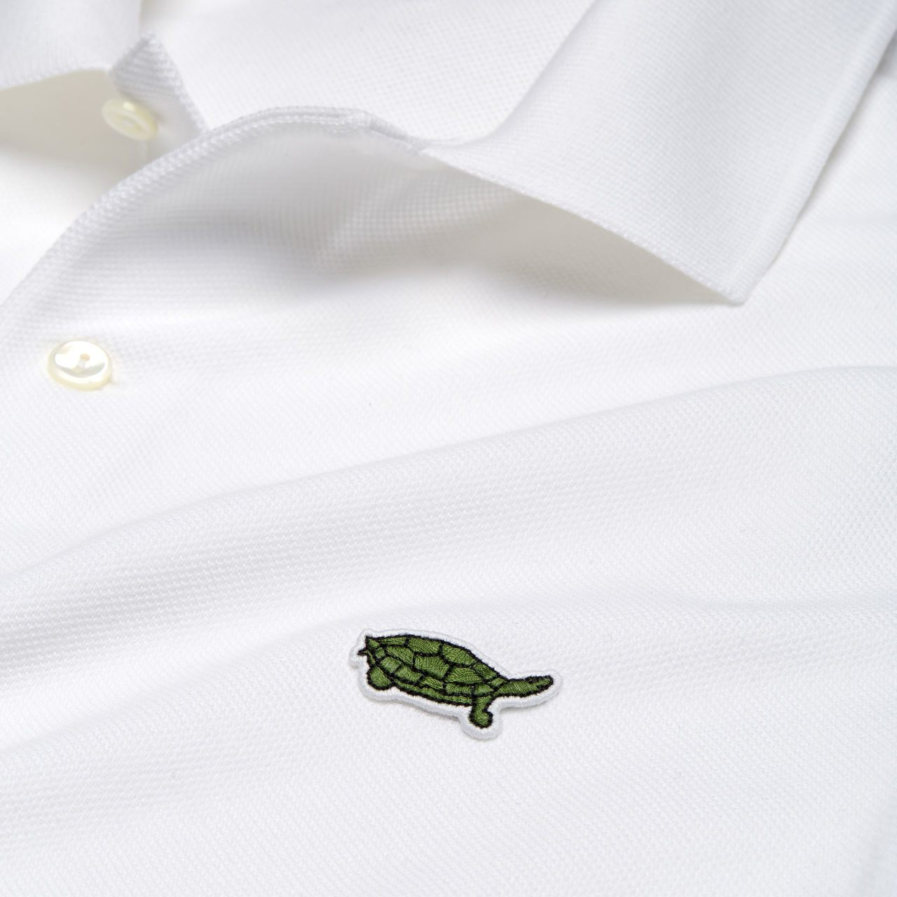 tortuga batagur lacoste save our species