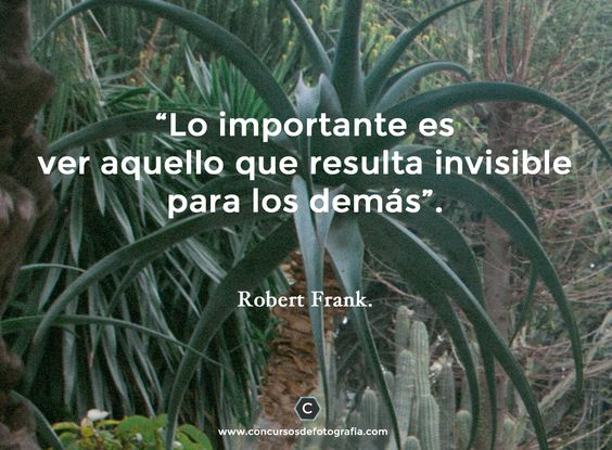 phrase Robert Frank