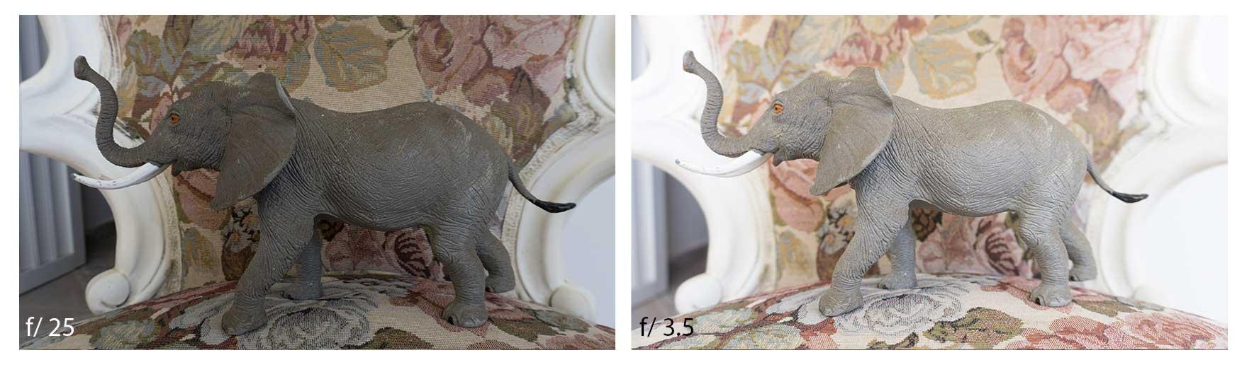 Comparison photo with different diaphragm apertures
