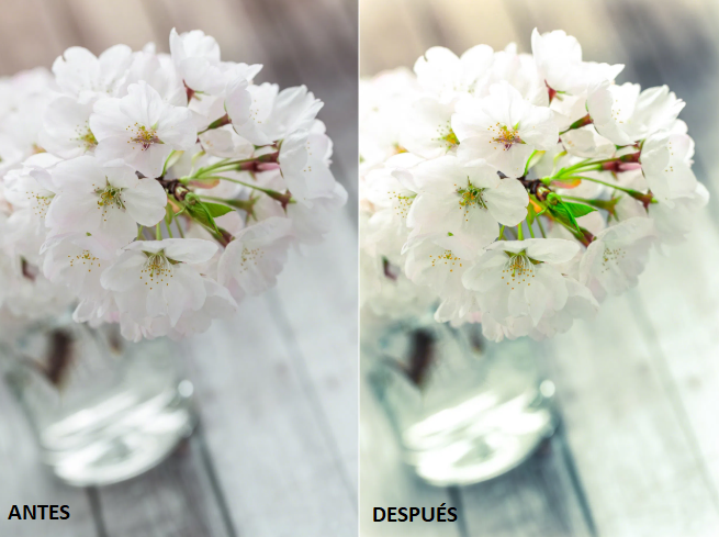 preset for lightroom