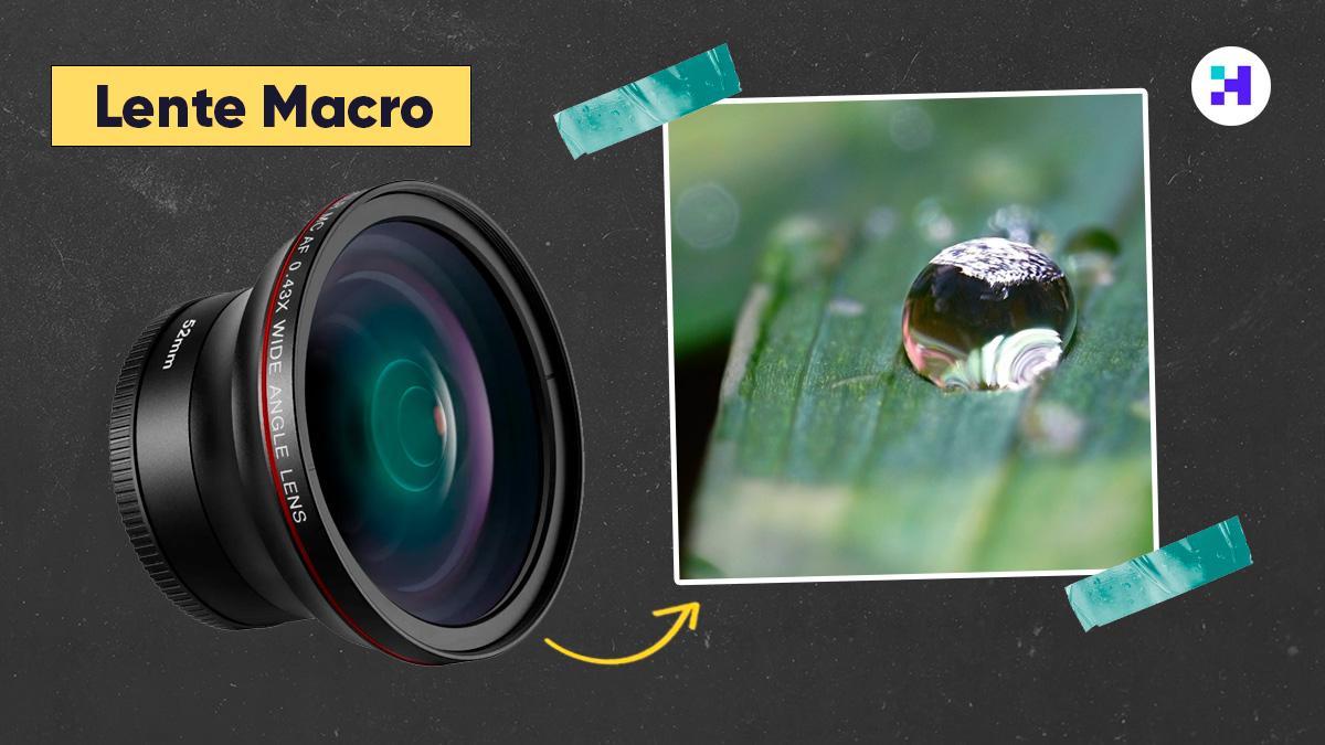 Cuando usar un lente macro de fotografia