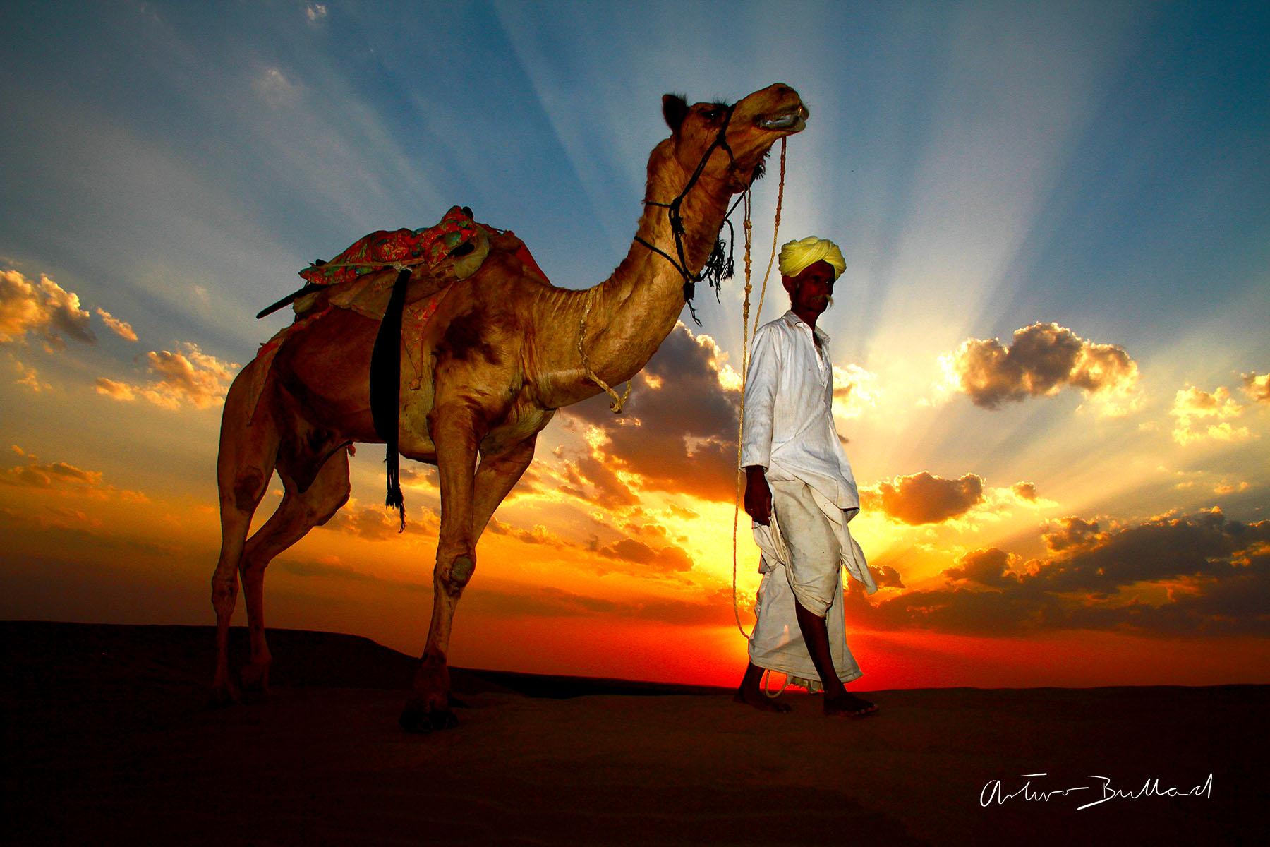 Desierto de la India