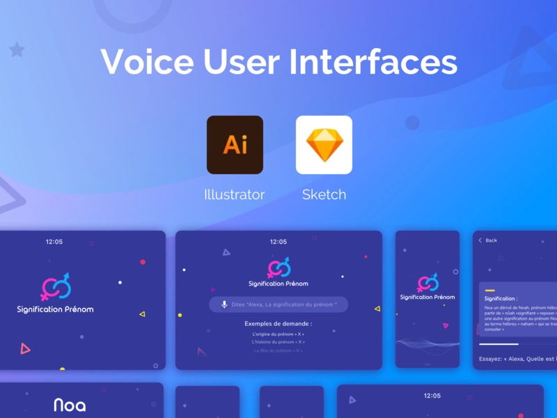 voice user interface 2021